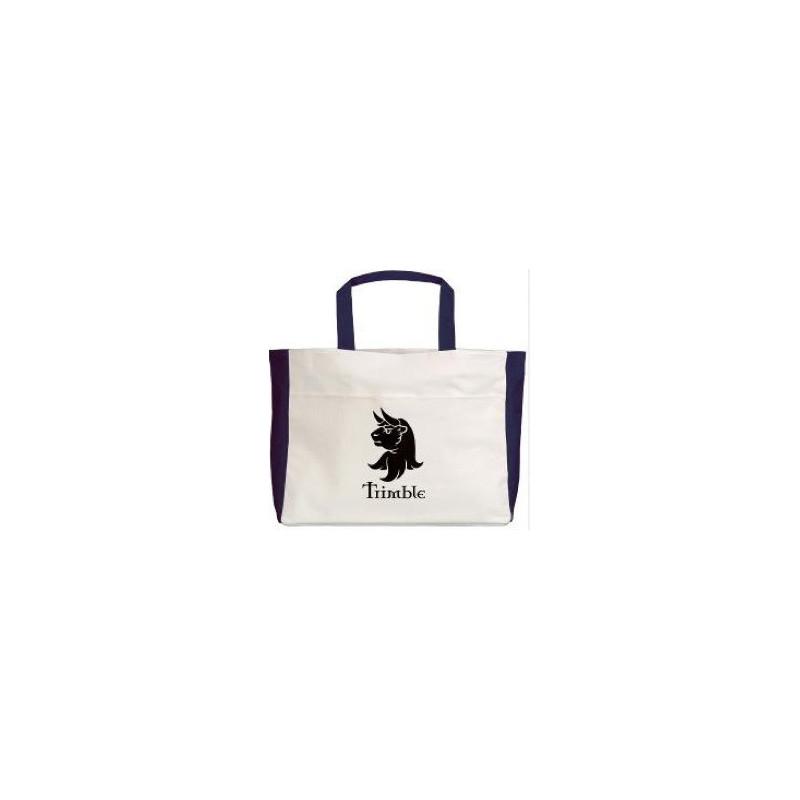 Trimble Beach Bag